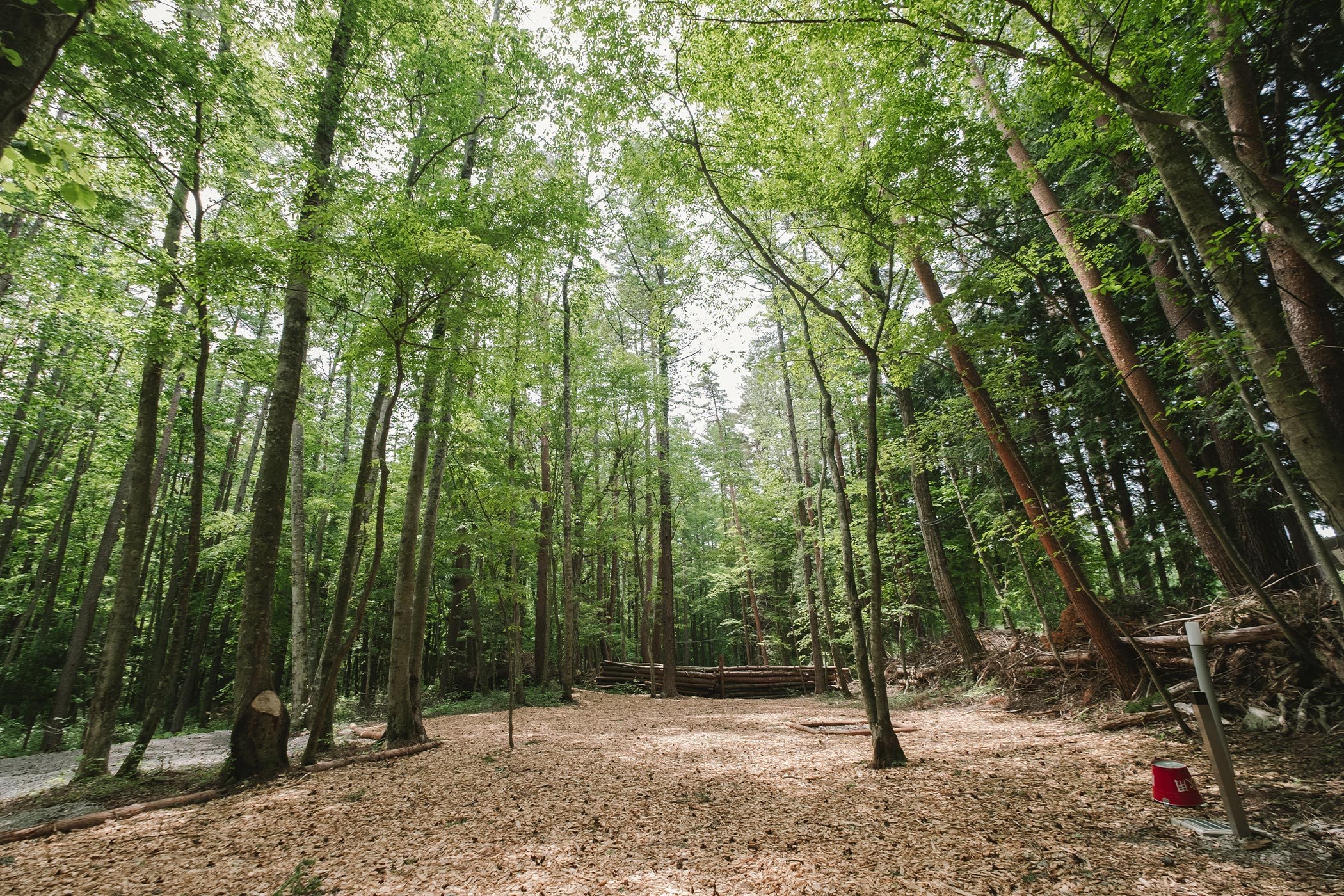 森林リゾートサイト L