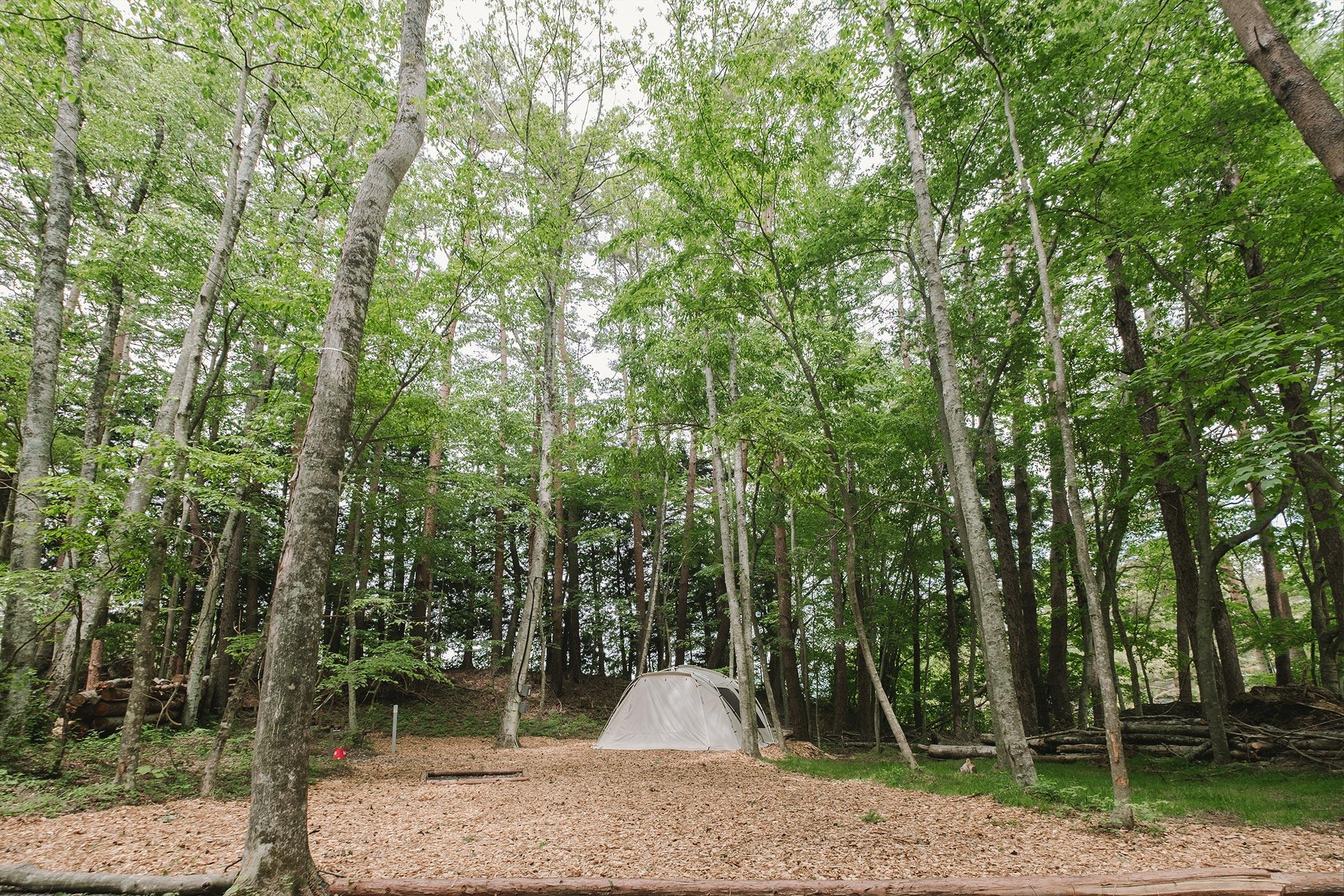 森林リゾートサイト